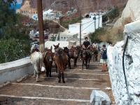 Santorini (Griechenland), Touristentransport