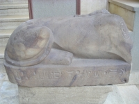 Sphinx_Memphis_Ramses_0704