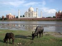 Taj_Mahal-10