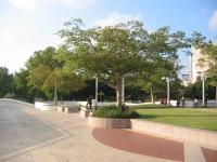 Tel Aviv Performing Arts 11 (Dubnov Garden)