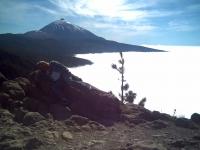 Tenerife-Orotava-Teide4