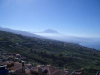Tenerifenorth