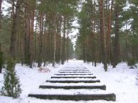 Treblinka - Rail tracks