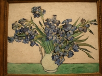 Van_Gogh_Irises_in_NYC_partial
