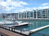 Viaduct Basin Auckland 01