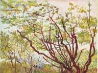 Vincent_Van_Gogh_0021