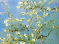 Vincent van Gogh: Blühende Mandelbaumzweige (1890)