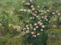 Vincent_van_Gogh_Roses