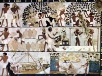 Darstellung des ägyptischen Weinbaus aus dem Grab TT261, Dra Abu el-Naga, Theben-West, Ägypten (um 1500 v. Chr.).