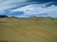 Pampa de Tamarugal