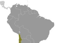Geografische Lage von Chile innerhalb Südamerika