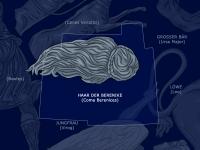 Haar der Berenike: Coma Berenices