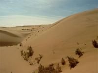 Gobi Desert, Inner Mongolia Autonomous Region, China