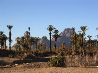 Hoggar, Sahara, Südalgerien