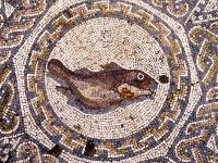 Mosaic wih Fish. Amphitheater House, Mérida, Badajoz, Spain