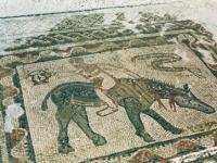 Volubilis: Mosaik eines Akrobaten