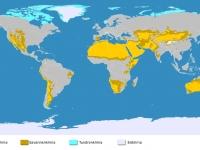 Trockenklimate auf der Welt
