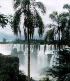 Iguaçu Wasserfälle in Brasilien