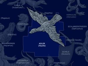 Adler: Aquila