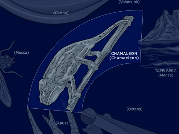 Chamäleon: Chamaeleon