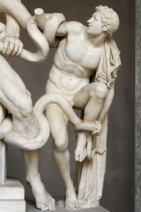 Laocoon Pio-Clementino Inv1059-1064-1067 n8