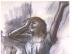 Degas_-_Erschoefte_Taezerin
