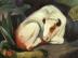 Franz Marc: Der Stier