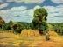 Camille Pissarro: Ernte (1876)