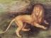 Albrecht Dürer: Löwe