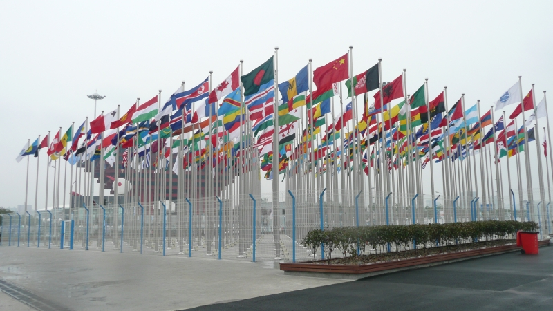 Expo 2010 flags 1