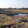 Etosha Natinalpark, Namibia