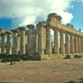 Tempio di Zeus, vista generale