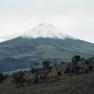 Cotopaxi  (Vulkan), Ecuador