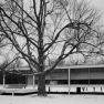 Farnsworth House in Plano, Illinois (2)