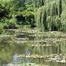 Monet´s Garten in Giverny: Seerosenteich und Japanische Brücke