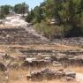 Kameiros,_ruins_of_ancient_Greek_city_-_Rhodes,_Greece_-_02