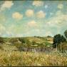Meadow,_Alfred_Sisley,_1875