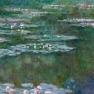 Monet_-_Nenafares
