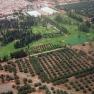 Agdal-Gärten